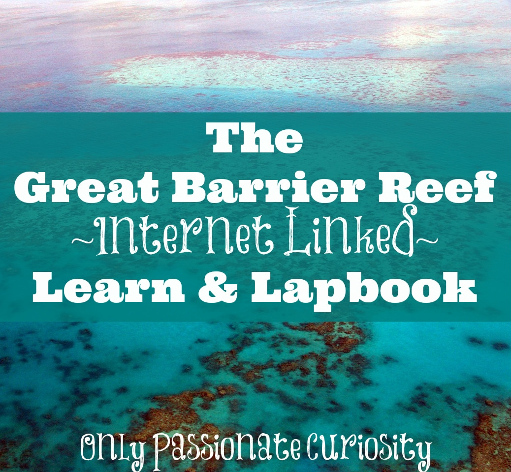 Great Barrier Reef (Learn & Lapbook)