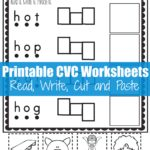 CVC O Read and Write Cut and Paste