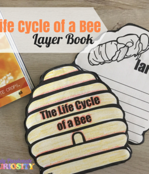 Life Cycle of a Bee (1)