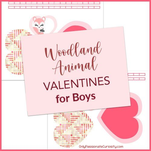 boy version of woodland animals valentines