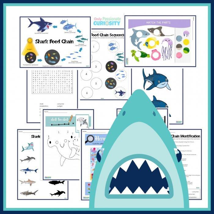 shark activity pack for kids